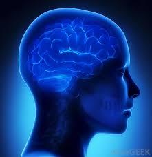 Neurology MS Study